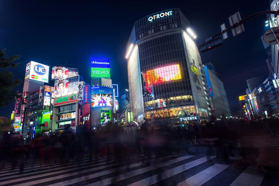 Tokyo Private Tour Guide