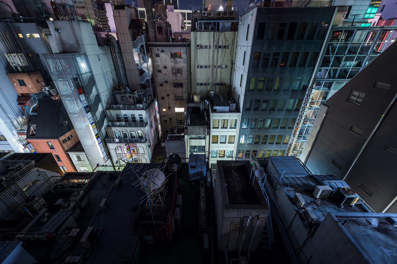 A Journey on the Rooftops of Tokyo