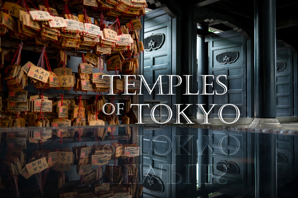 Tokyo Photo Tour - Temples of Tokyo photo workshop by EYExplore