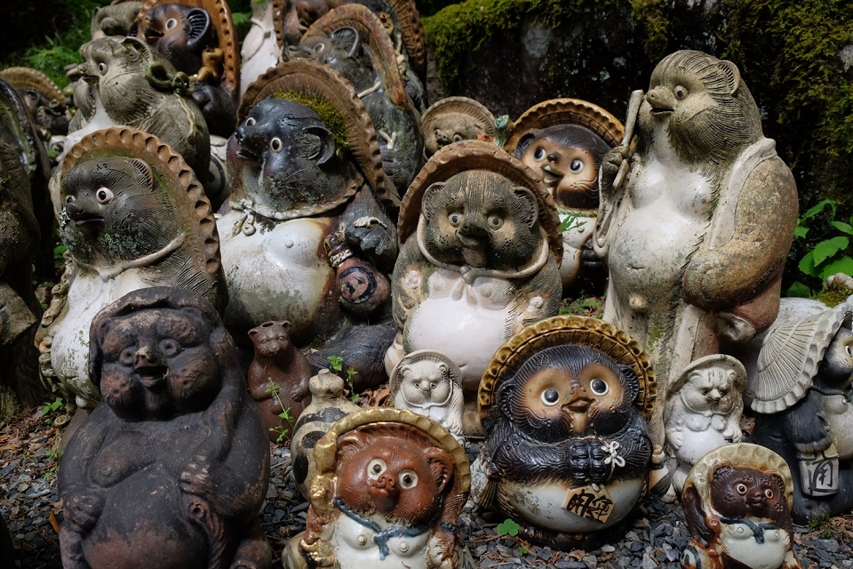 Statues of tanuki raccoon dogs at Tanuki Dani Fudo-in Temple. ISO 400, f/5.6, 1/300 sec, 28mm (full frame equivalent)
