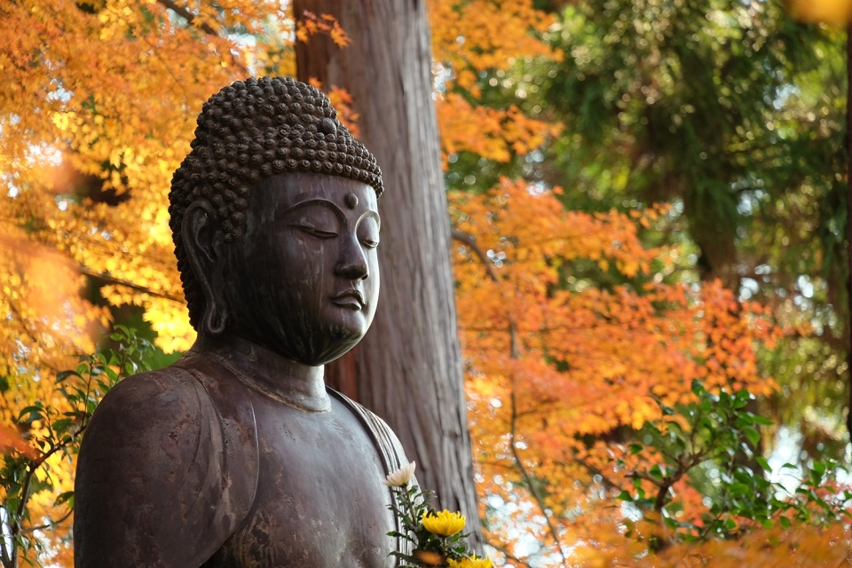 A statue of the Buddha at Eishoin Temple at Kurodani. ISO 500, f/5.6, 1/125 sec, 285mm (full frame equivalent)