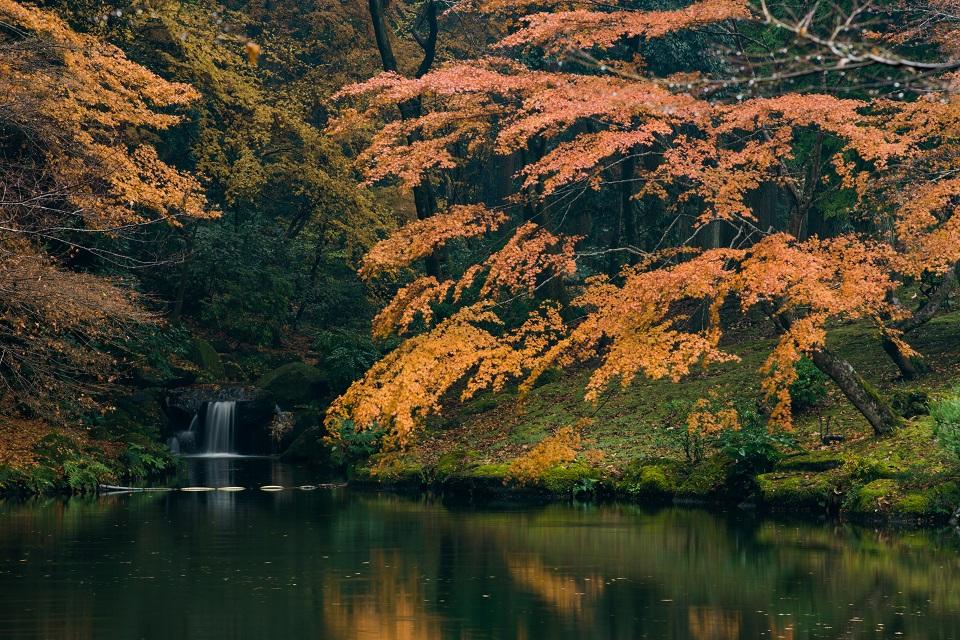 A Photographer's Guide to Transit at Narita-Small Waterfall-EYExplore