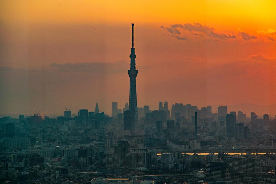 9. Free Observation Decks in Tokyo Japan I-Link Ichikawa