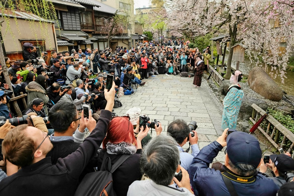 Kyoto's Finest: Cherry Blossom Season - EYExplore - I stumbled across a photo event at Gion Shirakawa where a couple of hundred people photographed two geisha. It was surreal. We can arrange private photography workshops for you.