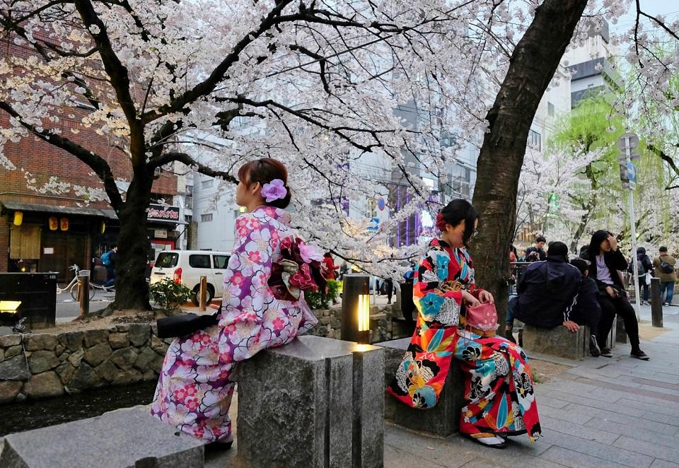 Kyoto's Finest: Cherry Blossom Season - EYExplore - Women in kimonos seated along the Takase canal at Kiyamachi Street.
