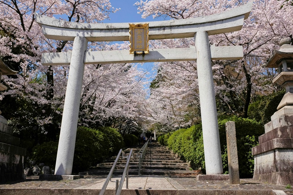 Kyoto's Finest: Cherry Blossom Season - EYExplore - A torii gate at the entrance to the stairs leading up to Munetada Shrine.