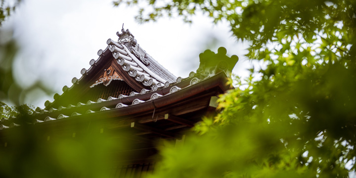The Nanzenji temple complex is a bastion of zen—a place where we can take a mindful approach to photography during the workshop