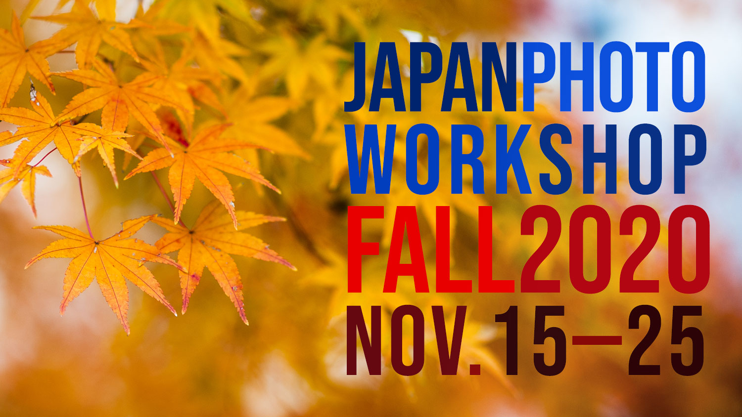 Japan Photo Workshop — Fall Session — EYExplore