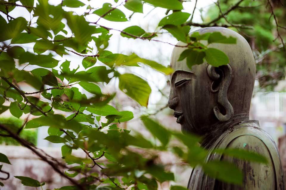 Kyoto Bespoke Photo Adventure — EYExplore Photo Tour