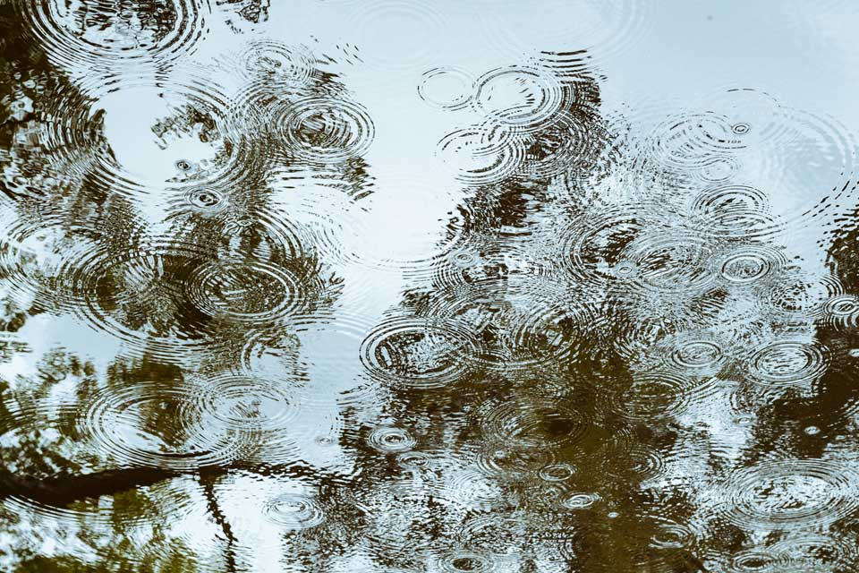 Ripples formed by rain drops at Tenju-an.