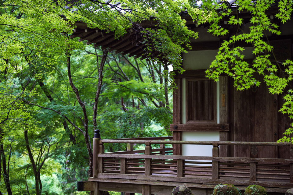 Temple terrace among the maple trees at Otagi-Nenbutsuji.