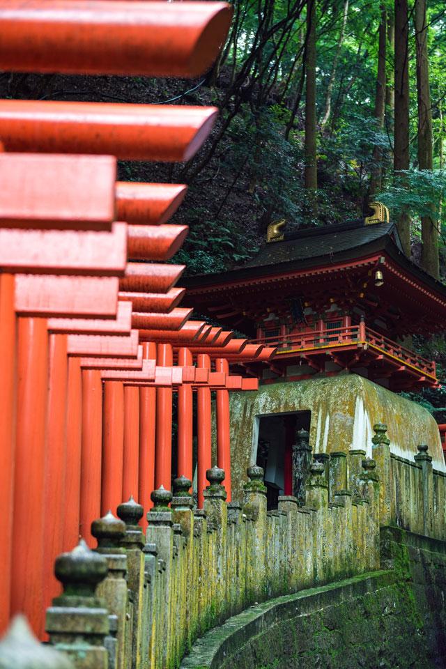 Torii gates at Tanukidani.